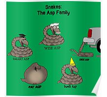 Snakes in the Asp Family Poster