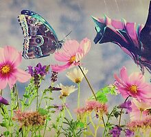 Love at first flutter by © Kira Bodensted