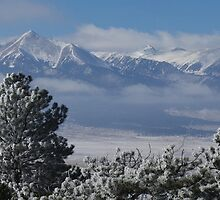 Frosty Day In The Sangres by Gary Benson