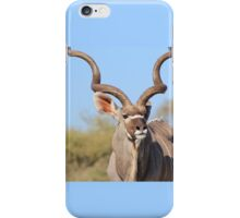 Kudu Bull - African Wildlife Background - Spiral Elegance iPhone Case/Skin
