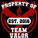 Valor. Vigilance. Victory by Brittany Cofer