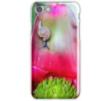 Macro shot of a snail on an colorful exotic plant iPhone Case/Skin