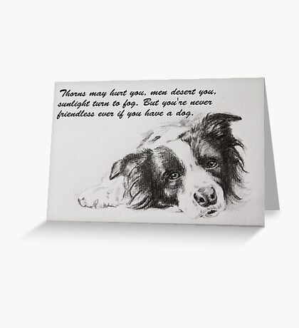 Thorns may hurt you...Border Collie Greeting Card