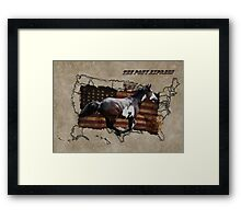 Pony Express Pinto Horse Delivering US Mail Framed Print