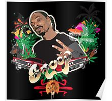 Snoop dogg - plain background Poster