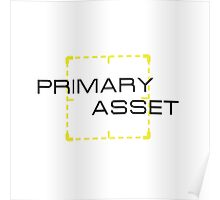 Primary Asset Poster