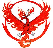 Team Valor pokemon go red flames fire Photographic Print