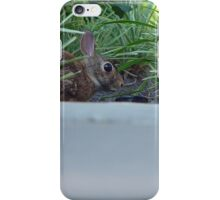 Bunny In The Bushes iPhone Case/Skin