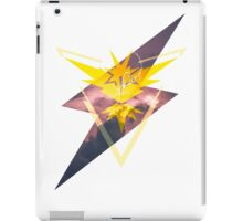 Team Insinct iPad Case/Skin