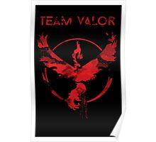 Team Valor Crest Poster