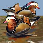 Mandarin Ducks by IowaArtist