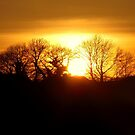 Sunset by KnightsOfShame