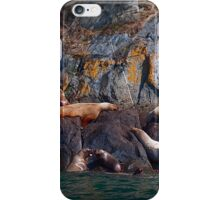 SeaLions iPhone Case/Skin