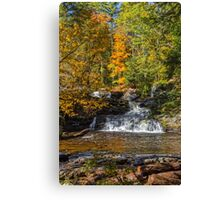 George Childs Park In Autumn Canvas Print