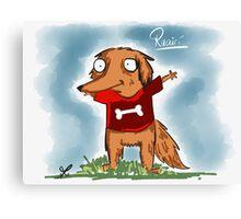 Ruairí the Irish red setter Canvas Print