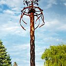 A Sculpture In The Park by The Lake - no.48 by Solomon Walker