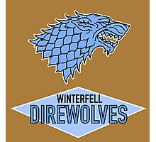 Winterfell Direwolves Photographic Print