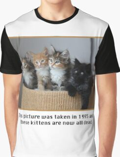 Cute Kittens Graphic T-Shirt