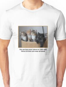 Cute Kittens Unisex T-Shirt