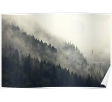 Forest Moon Poster
