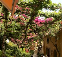 Strolling through Positano by Barbara  Brown