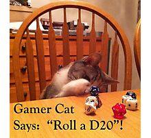Gamer Cat Roll A D20 Photographic Print