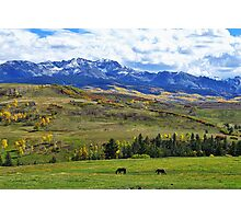 Autumn Pastural Setting Photographic Print