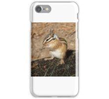 Pretty as a chipmunk iPhone Case/Skin