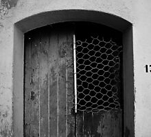 The door by GioclearDesign