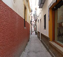 Alley in Seville, Spain by pricklystrudel