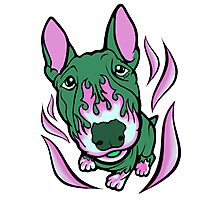 Hot Rod Thistle Bull Terrier Photographic Print