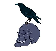 Raven Perched On A Human Skull Photographic Print