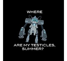 Where are My Testicles, Summer? Photographic Print