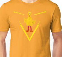 Team Big Bird Unisex T-Shirt