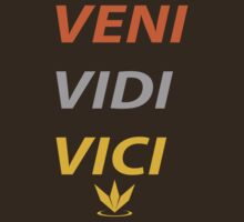 Veni Vidi Vici by nick94