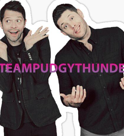 #TeamPudgyThunder Sticker