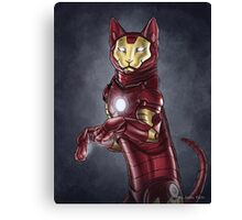 Iron Cat Canvas Print