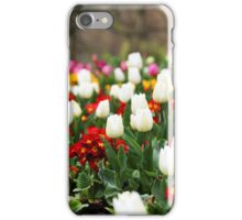 White Tulips in Spring in London iPhone Case/Skin