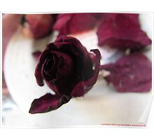 A Rosey View Poster