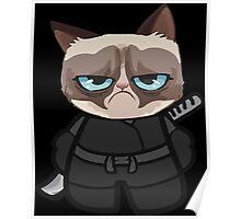 Grumpy Ninja Cat Poster