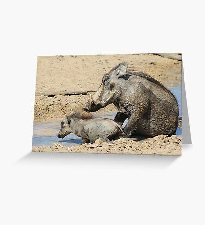 Warthog - African Wildlife Background - Animal Babies Greeting Card
