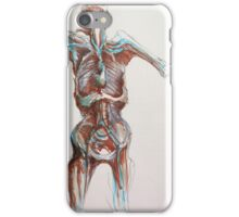 dried out iPhone Case/Skin