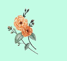 Orange Rose on Mint by ThistleandFox