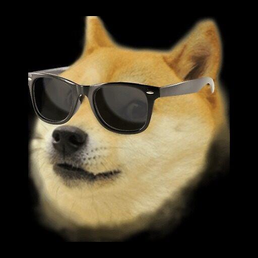 Cool Doge iPhone 5/5s Caseu0026quot; by Austinstuff : Redbubble