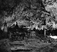 Carlsbad Caverns Study 12 by Robert Meyers-Lussier
