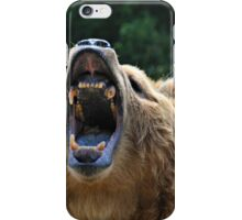 Bear Showing Teeth iPhone Case/Skin