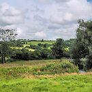 Rural Axminster by Susie Peek