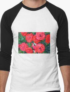 Red roses in the garden. Men's Baseball ¾ T-Shirt
