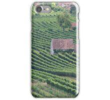 Vineyards am Wagram, Lower Austria iPhone Case/Skin