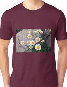 Beautiful small white flowers on the pavement. Unisex T-Shirt